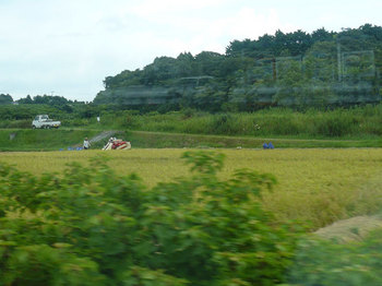 kintetsu_12.jpg